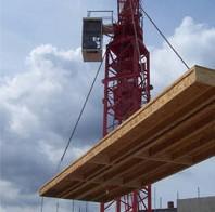 Crane-Erect-2